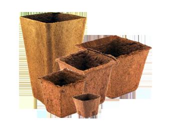square biodegradable pots